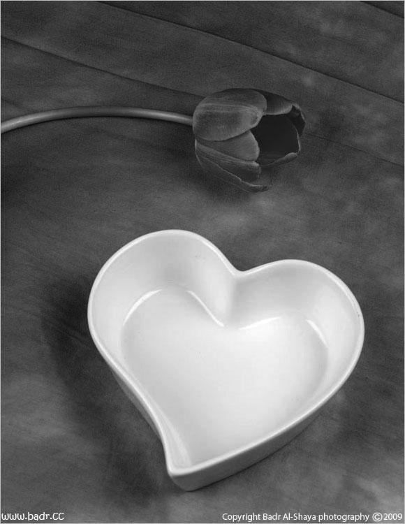 حياة القلب