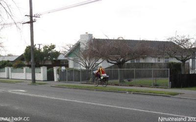 خواطر نيوزلندية – جولة على الرصيف